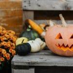 pumpkin on a bench with orange mum